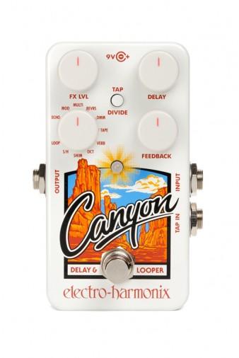 Canyon Delay & Looper